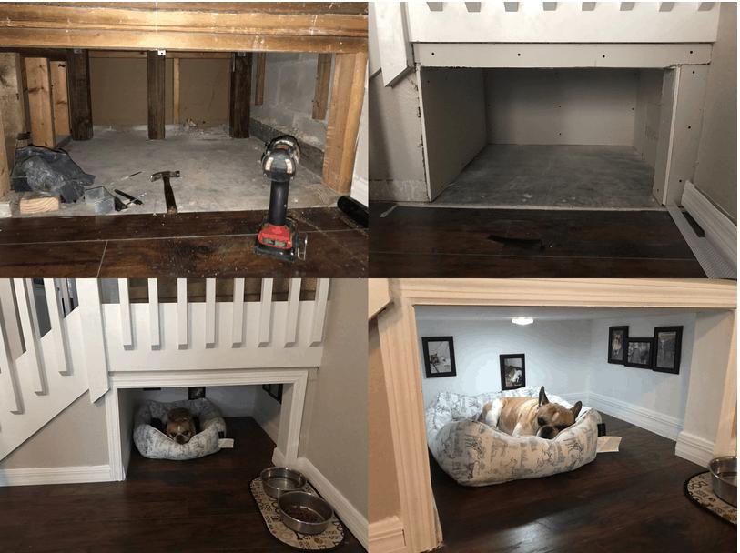 Дизайн интерьера для собачек