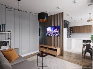 ТВ-зона в кухне-студии в Черноморске