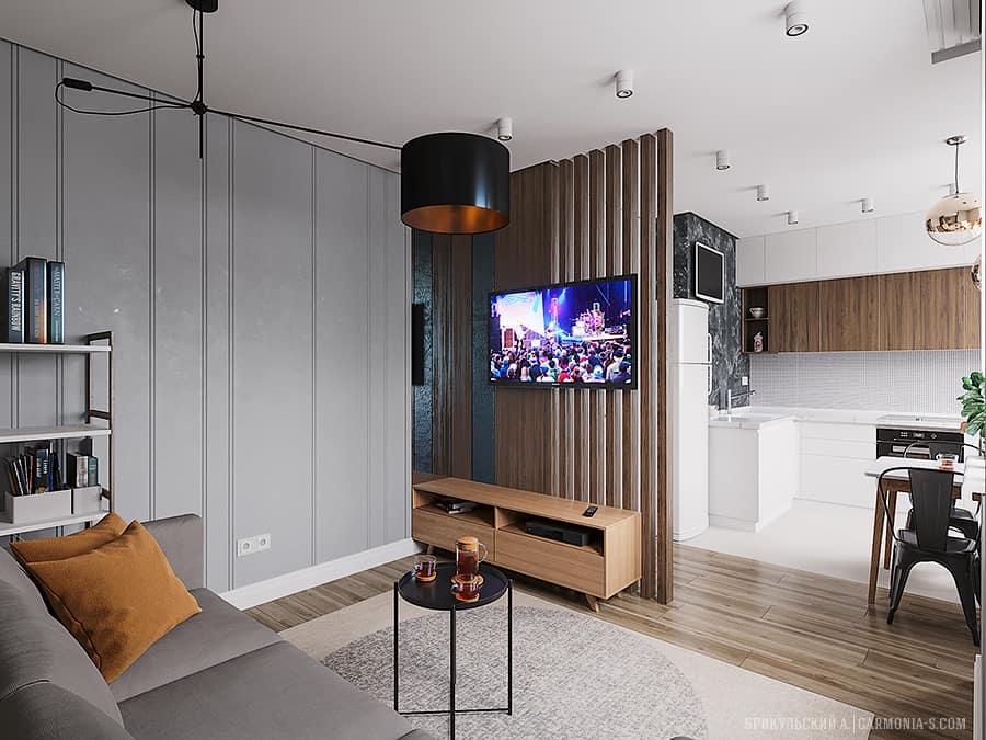 ТВ-зона на кухне в интерьере
